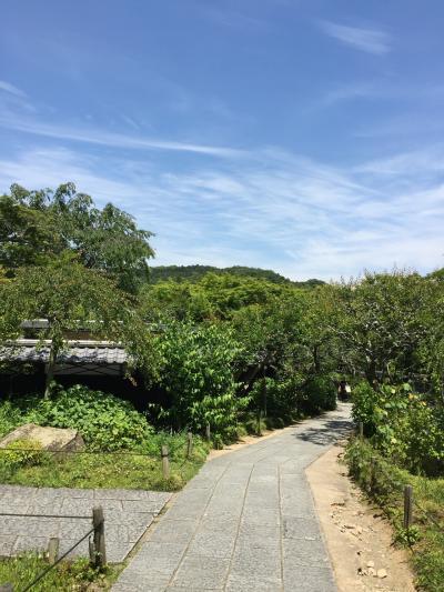 東京 鎌倉一人旅 2日目 鎌倉と江の島