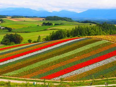 美瑛の丘と大雪山の日本一早い紅葉に温泉、そして富良野フレンチを求めて 2018北海道の旅1