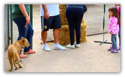 うへっ!!ここ本当にヤバイ!...げに恐ろしいブエノスアイレスの【ルハン動物園 Zoo Lujan】#3(ブエノスアイレス郊外/アルゼンチン)