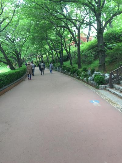 にゃん吉お留守番の GW ソウル家族旅行 ⑤      石村湖お散歩....... 他
