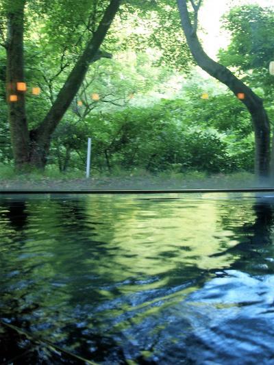 「 水上温泉 」 & 「 夏競馬 」 の旅 < 群馬県利根郡・新潟県新潟市 >