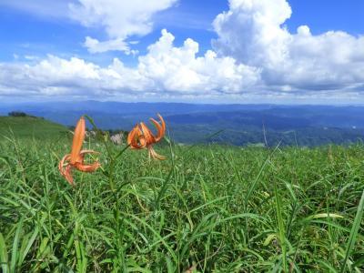 2018年8月13日(月) 島根県 三瓶山(男三瓶山頂~山頂からの景色)