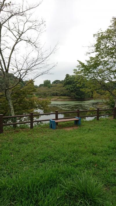 甘木公園2