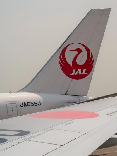 羽田空港 JAL665便  12:15発 大分行 ☆37K窓側/得々別府4日間フリープラン