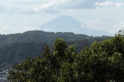 祇園山見晴台から見る富士山