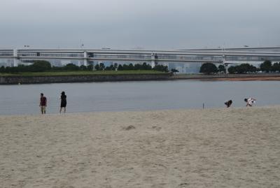 2018夏、関東の続百名城巡り(1/25):8月29日(1):品川台場(1):名古屋から新幹線で東京へ、観光バスでお台場へ、潮風公園、東京湾