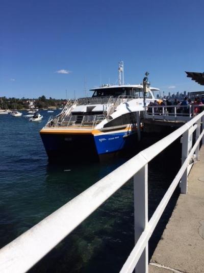 9月のシドニー フェリーでタロンガ動物園や湾内のビーチ巡り