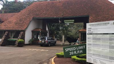 移動日は早めに起きてナイロビ国立公園に行ってきました