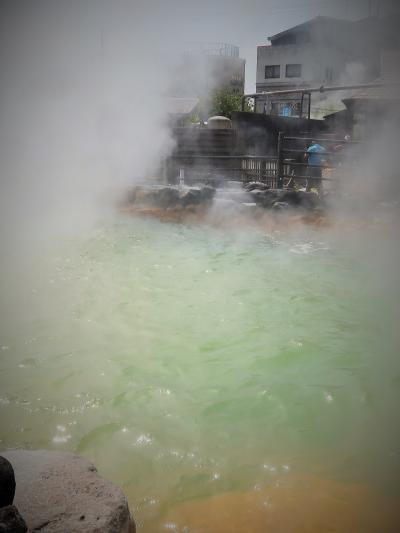別府10 鬼山地獄 緑白色の熱水をたたえた池 ☆イリエワニなど100頭近くも飼育
