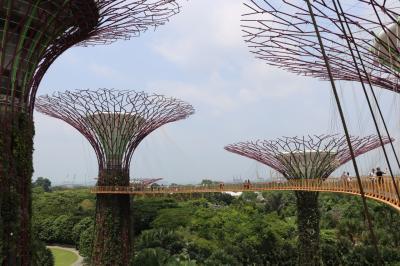 2018年夏シンガポール その3 ガーデンズ・バイ・ザ・ベイ、プラナカン博物館、オーチャードミシュラン1つ星ディナー