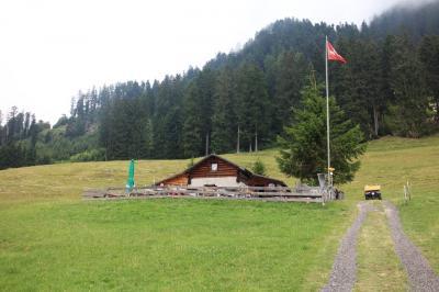 大自然*スイス横断 6日目 マイエンフェルト(ハイジ)→チューリッヒ