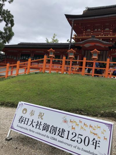 【1】しばお的☆奈良☆京都☆東山魁夷展そして忘れ物