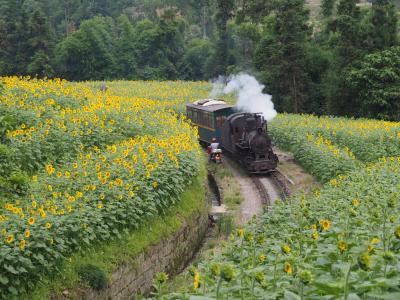 中国火車紀行 -残されていた狭軌SL-