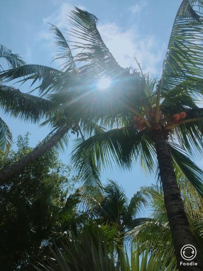 美 プライベートビーチ景色最高 インターコンチネンタルバリ