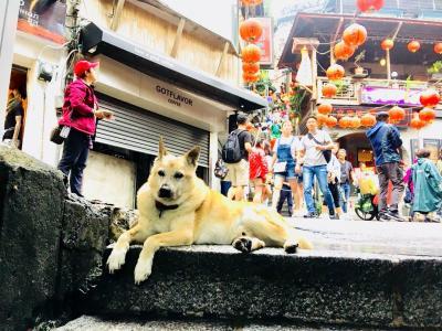 初めての台湾旅行(2018年9月)