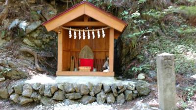 武甲山登ってきました。♯3~シラジクボ分岐から不動滝、大杉の広場へ~