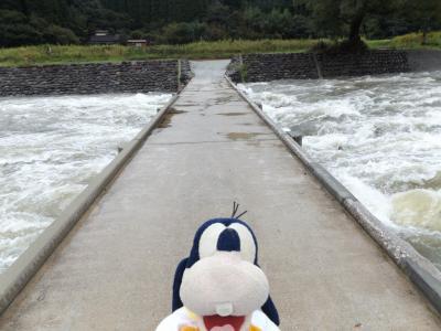 グーちゃん、雨の耶馬溪へ行く!(山国川に架かる「橋」を巡る物語り・・・。編)