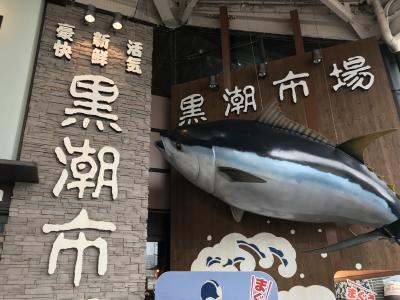 和歌山市、黒潮市場(と岸和田城) 日帰りの旅
