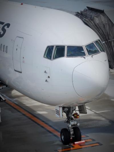 大分空港1/2 展望デッキ・3階レストランからの眺め ☆ボーイング767-300 日航機到着