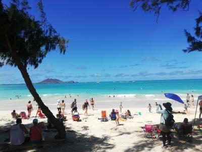 ④初めてのハワイ、日焼けと糖質が気になるアラフォー二人旅。4日目:水中スクーター、チーズケーキファクトリー、ガーリックシュリンプ