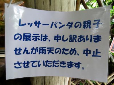 初秋のレッサーパンダ紀行【3】多摩動物公園&羽村市動物公園 今年生まれの李花ちゃん会いに行くも・・・@多摩 来年こそはの期待を込めて@羽村