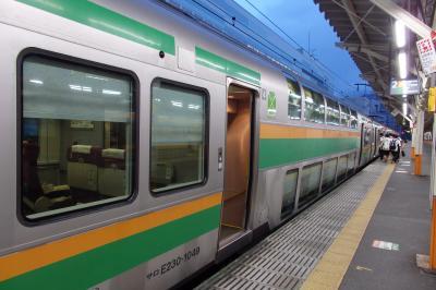 2018.09 ワープ三昧東北18切符旅行(12)東海道本線・快適シートを乗り継ぎながら410km帰宅編