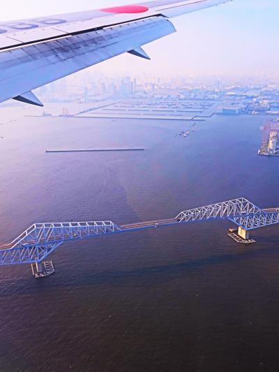 東京国際空港 JAL670便 羽田到着12分遅れ ☆ゲートブリッジ上空を通過し