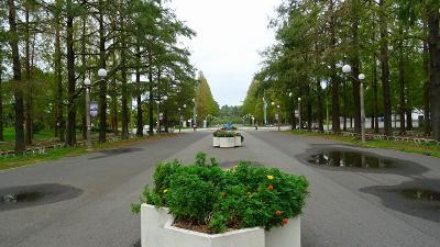 花博記念公園鶴見緑地 その1 入園から咲くやこの花館入園まで。