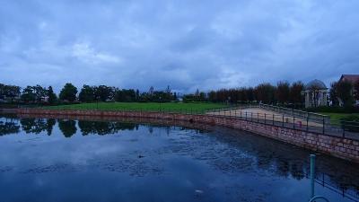 早朝散歩 宝塚市新池公園を一周してきました 下巻。