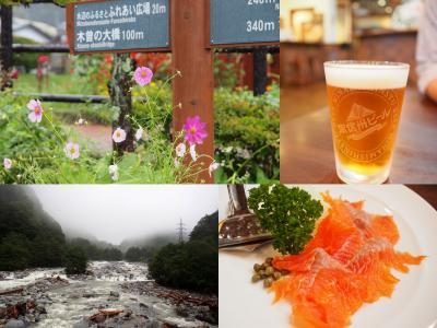 雨だけどドライブしたい!「南信州ビール 味わい工房」で地ビール飲み比べ 奈良井木曽の大橋だけ見学 きそむら道の駅でトウモロコシを買う