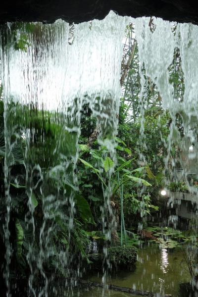 Thanks 老人週間!無料公開施設 2連発☆夢の島熱帯植物館の巻