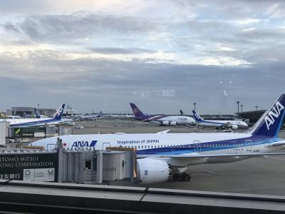 香港に行くはずだったのに。。。行先成田に