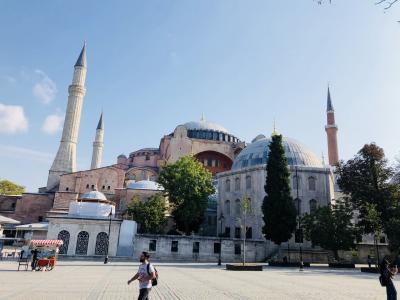 イスタンブールのド定番:アヤソフィア、ブルーモスク、そしてネコ[2018年9月10月世界一周特典航空券の旅3]