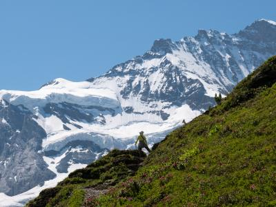 スイス頑張らない紀行(3)予定外の最高のハイキング