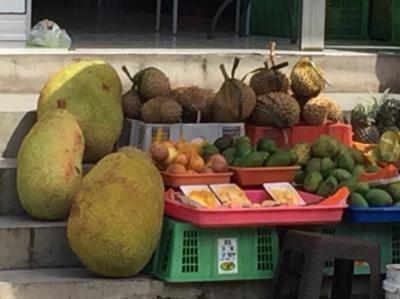 びっくり!巨大フルーツ