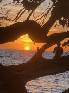 父と娘+Tのハワイ島旅行記2018