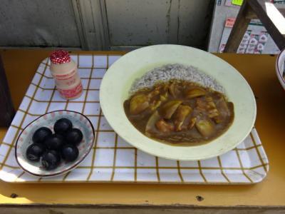 日本百名山の伊吹山山頂の手作りカレーは超美味