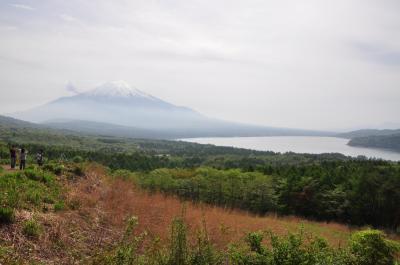 初夏の富士山へ、犬連れの一泊旅行