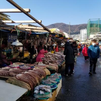 韓国 釜山 2泊3日 ワチャワチャ旅
