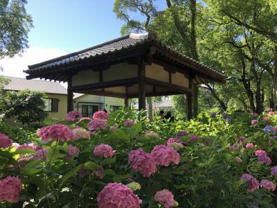 京都・伏見周辺ぶらり旅