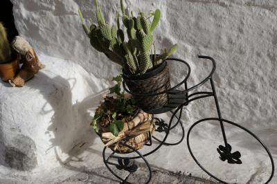 美しき南イタリア旅行♪ Vol.257(第8日)☆Ostuni:美しい「オストゥーニ旧市街」カッテドラーレ通り オシャレなショップ♪