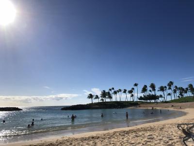 夫婦2人でハワイ  6日目