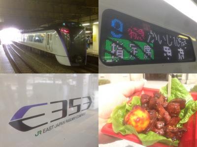 中央線の新型特急E353系「特急かいじ」で行く甲府の旅