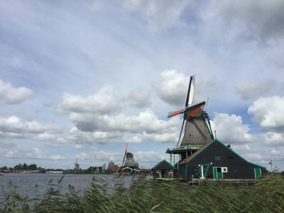 恒例の夏休み旅行ーオランダからベルギーへ;オランダ編