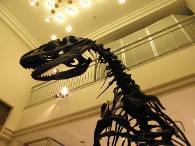 奥出雲で恐竜に出会う