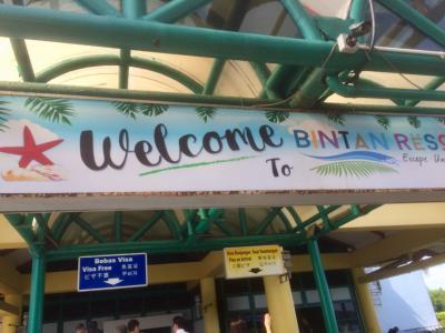 深夜便で3歳と行くビンタン島&シンガポール①羽田~シンガポール~ビンタン交通アクセス
