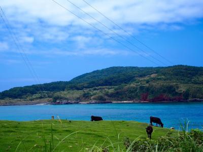 五島列島 絶景を巡る周遊旅(福江島→中通島→小値賀島) 3~4日目