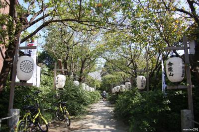 秋彼岸の鎌倉花散歩