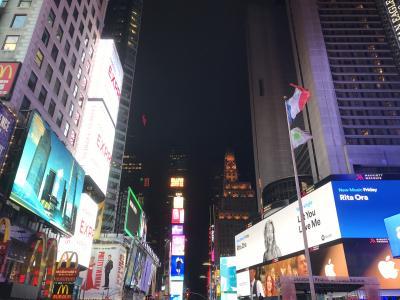 【New York】憧れの街・定番スポット回るニューヨーク一人旅 vol.1