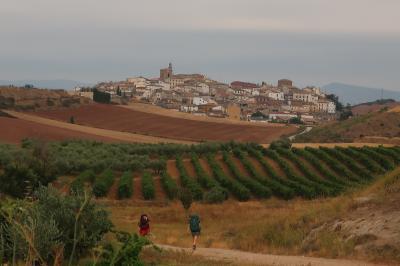 スペイン サンチアゴ巡礼⑧ 巡礼第5日 ナバーラの草原をエステーリャへ